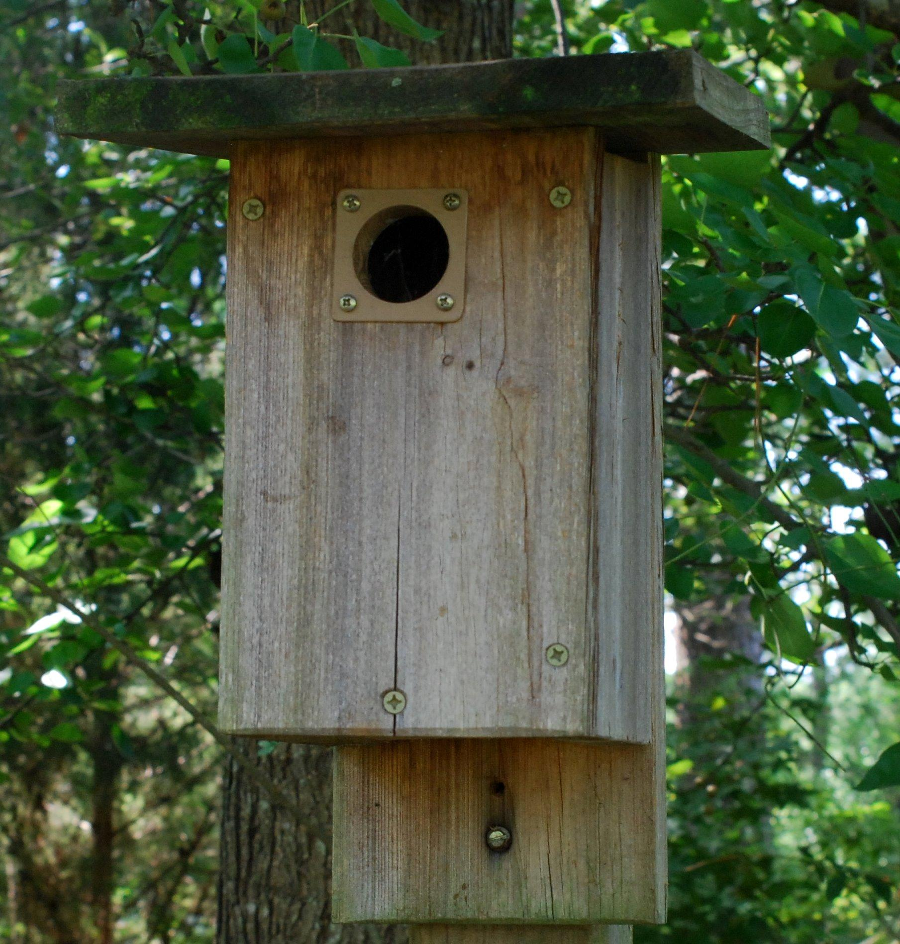 Photo of bird house